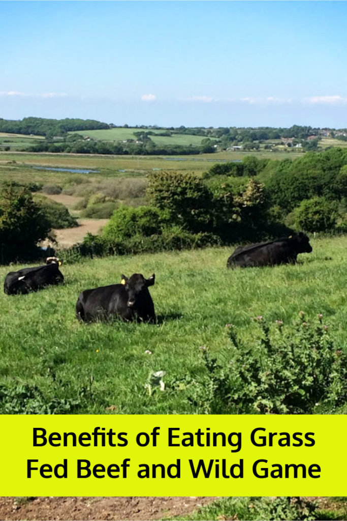 Benefits of Eating Grass Fed Beef and Wild Game