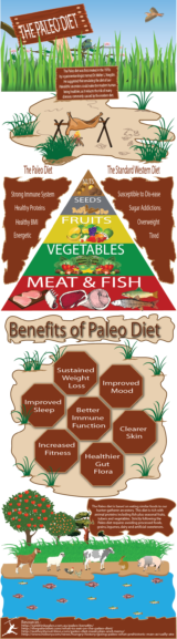 how to get started on a paleo diet